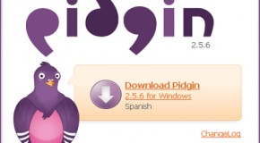 Pidgin 2.5.6